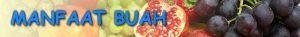 728x90 MANFAAT BUAH