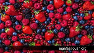 buah-buahan-pencegah-kanker