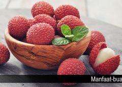 Manfaat Leci Bagi Kesehatan Tubuh