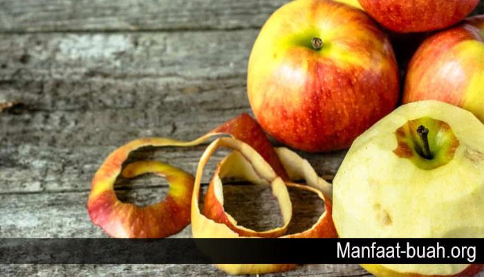 Khasiat Dari Kulit Buah Apel Bagi Kesehatan