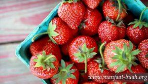manfaat-Buah Strobery