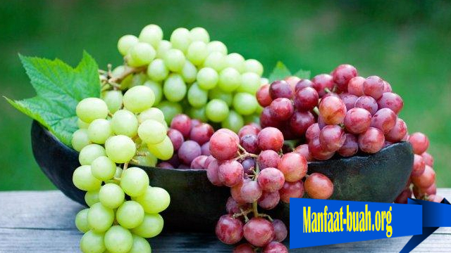 Khasiat Dari Buah Anggur