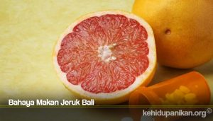 Bahaya Makan Jeruk Bali
