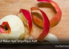 Manfaat Makan Apel Tanpa Kupas Kulit